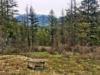 Clark Fork Residential Lots & Land For Sale: 392 Knapweed Ln