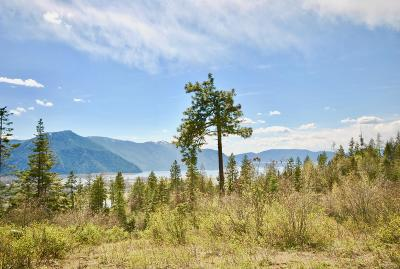 Clark Fork Residential Lots & Land For Sale: 3013 Majestic Mountain Rd