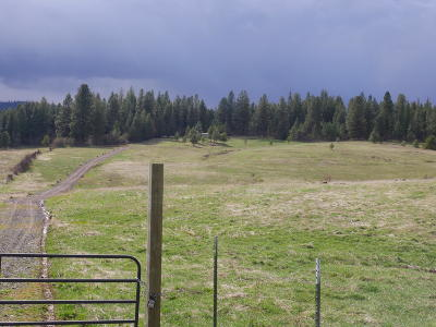 St. Maries ID Residential Lots & Land For Sale: $129,000