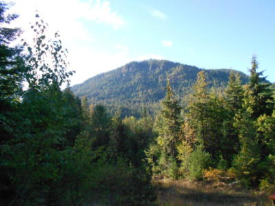 Clark Fork Residential Lots & Land For Sale: NNA Mosquito Creek Rd