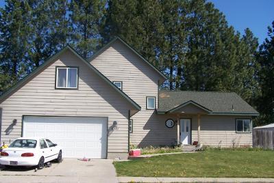 Rathdrum Single Family Home For Sale: 8501 W Nebraska St