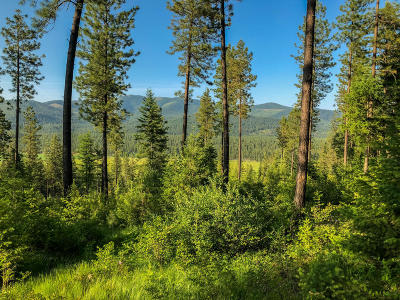 Blanchard Residential Lots & Land For Sale: NKA Forest Way