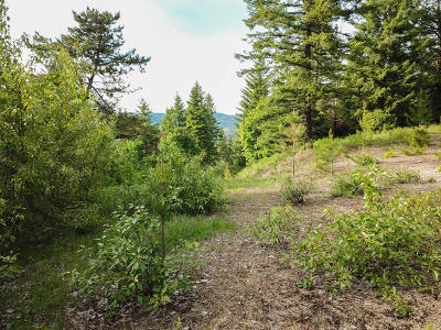 Hauser, Post Falls Residential Lots & Land For Sale: 15195 N Smith Ave