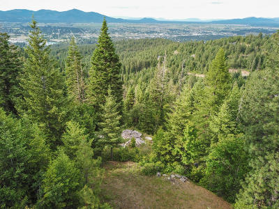 Hauser, Post Falls Residential Lots & Land For Sale: 11876 W Monument Dr