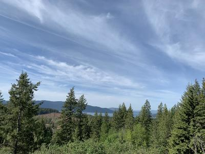 Sandpoint Residential Lots & Land For Sale: NNA Trappers Loop