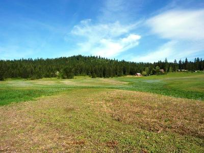 Coeur D'alene Residential Lots & Land For Sale: Dower Addn
