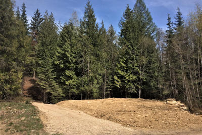 Sandpoint Residential Lots & Land For Sale: 125 Olympic Dr