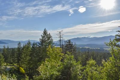 Sandpoint Residential Lots & Land For Sale: Nna Green Monarch Lane