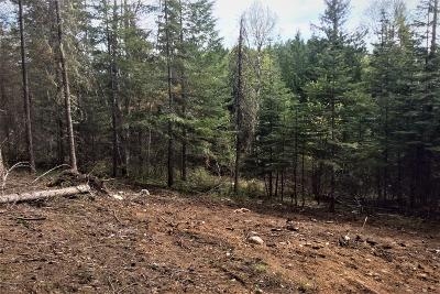 Sandpoint Residential Lots & Land For Sale: 135 Olympic Dr