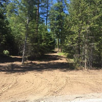 Rathdrum Residential Lots & Land For Sale: L9 B10 Walden Loop