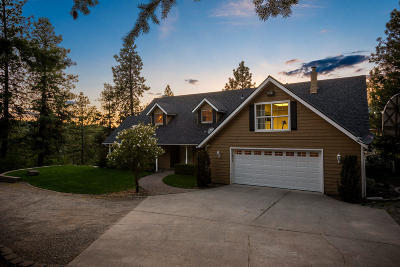 Post Falls Single Family Home For Sale: 15789 W Chantilly Ln