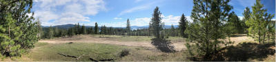 Coeur D'alene Residential Lots & Land For Sale: E Mullan Trail Rd