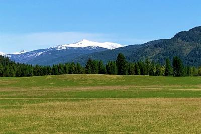 Sandpoint Residential Lots & Land For Sale: NKA Colburn Culver