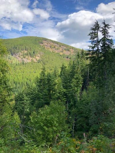 Sandpoint ID Residential Lots & Land For Sale: $145,000