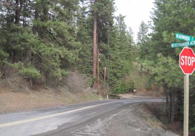 Coeur D'alene Residential Lots & Land For Sale: Meadowbrook