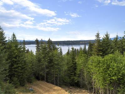Coeur D'alene Residential Lots & Land For Sale: Upper Hayden Lake Rd