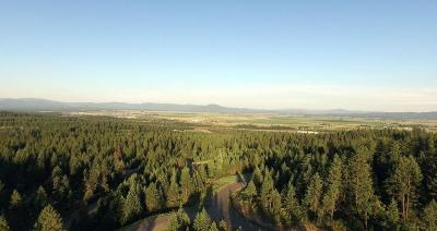 Rathdrum Residential Lots & Land For Sale: L2B4 N Spiral Ridge Trail