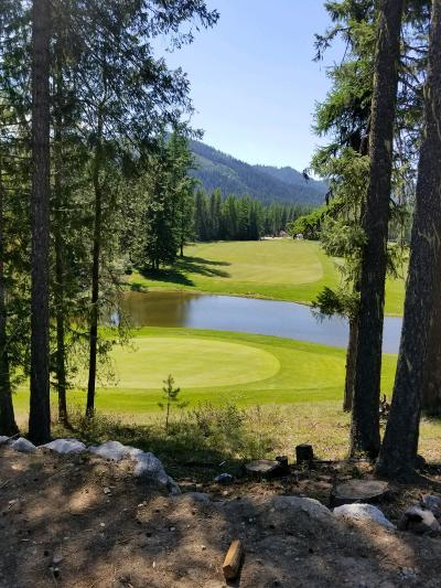 Priest Lake, Priest River Condo/Townhouse For Sale: NNA Divot Drive #401