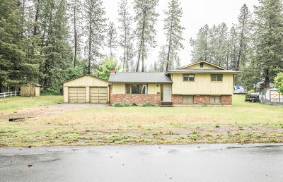 Rathdrum Single Family Home For Sale: 14540 N Roth Ct