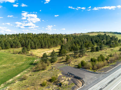 Coeur D'alene Residential Lots & Land For Sale: 23228 S Hwy# 95
