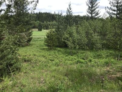 Sandpoint Residential Lots & Land For Sale: 1195 Hidden Valley Rd