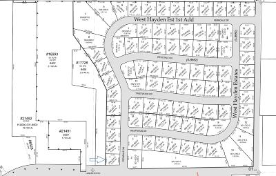 Hayden Residential Lots & Land For Sale: NKA Ferndale Dr