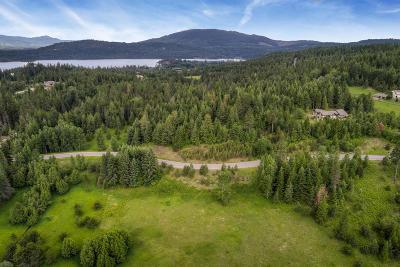 Sandpoint Residential Lots & Land For Sale: L7 Ravenwood Dr
