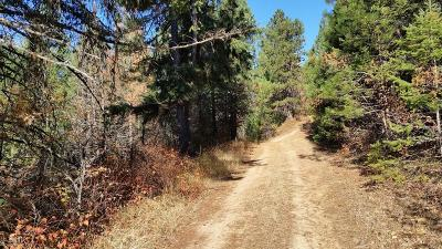 Benewah County Residential Lots & Land For Sale: NKA Highway 95