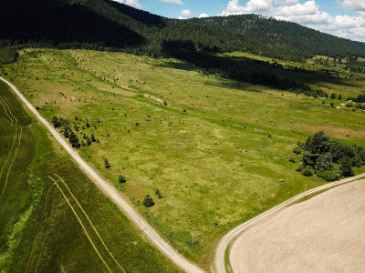 Benewah County Residential Lots & Land For Sale: NNA King Valley Road