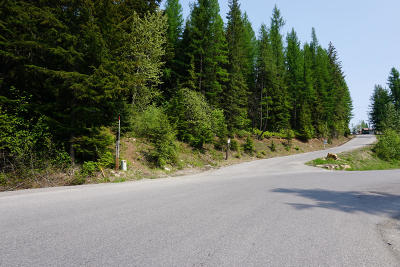 Sandpoint Residential Lots & Land For Sale: NNA Parallel Run Lot T9