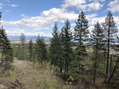 Sandpoint Residential Lots & Land For Sale: Lot 4 Heavenly Heights