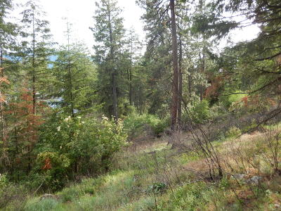 Bayview Residential Lots & Land For Sale: NKA Glacier Loop