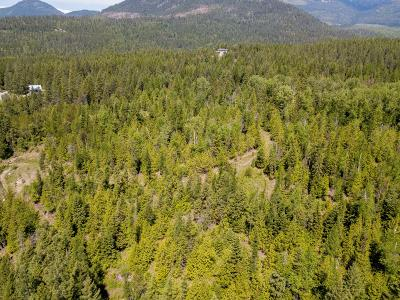 Sandpoint Residential Lots & Land For Sale: Wapiti Parcel 13 Dr