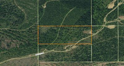 Benewah County Residential Lots & Land For Sale: 20 Acres Cherry Creek Rd