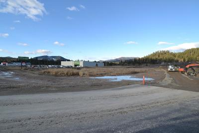 Oldtown Residential Lots & Land For Sale: Lot 1&2 Block 2 Hwy 2