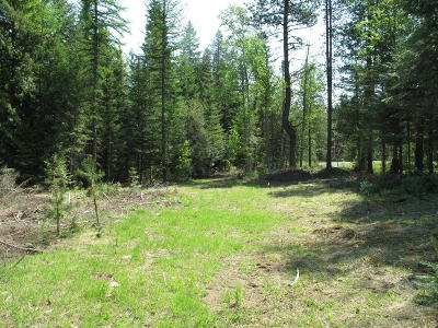 Sandpoint Residential Lots & Land For Sale: 1 Justice Ct