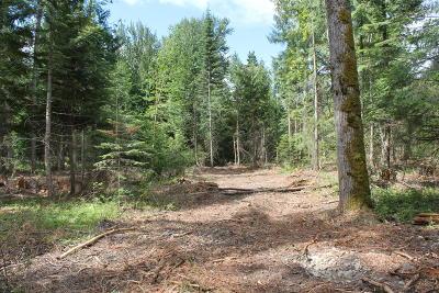 Clark Fork Residential Lots & Land For Sale: NKA Spring Lane SW 5 Acres