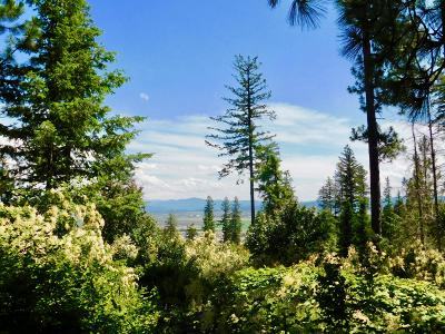 Rathdrum Residential Lots & Land For Sale: NKA Shirley Young Rd
