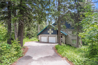 Sandpoint Single Family Home For Sale: 225 Ullr Dr