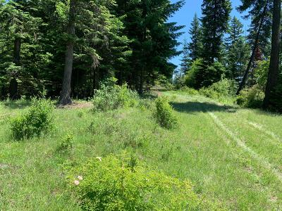 Benewah County Residential Lots & Land For Sale: NKA W Meadowhurst Dr.