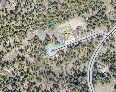 Rathdrum Residential Lots & Land For Sale: L10B3 Tributary
