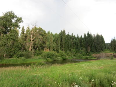 Benewah County Residential Lots & Land For Sale: Nka Santa Lot