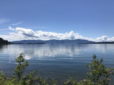 Sandpoint Residential Lots & Land For Sale: NNA #5 Country Road