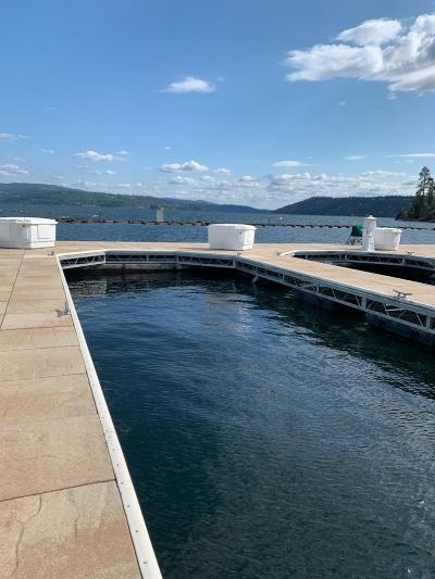 Coeur D'alene Residential Lots & Land For Sale: 1100 Lakeshore