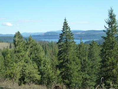 Coeur D'alene Residential Lots & Land For Sale: NKA Graysons Way