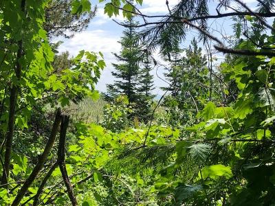 Benewah County Residential Lots & Land For Sale: 1701/1657 Upriver View Drive
