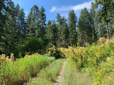 Benewah County Residential Lots & Land For Sale: NKA W. Meadowhurst