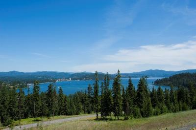 Coeur D'alene Residential Lots & Land For Sale: 2431 S Espinazo Dr