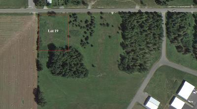 Sandpoint Residential Lots & Land For Sale: Lot 19 Beaver Ave