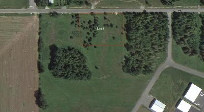 Sandpoint Residential Lots & Land For Sale: Lot 4 Otter St